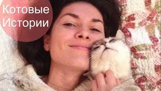 Случайно записанное видео про кошку.
