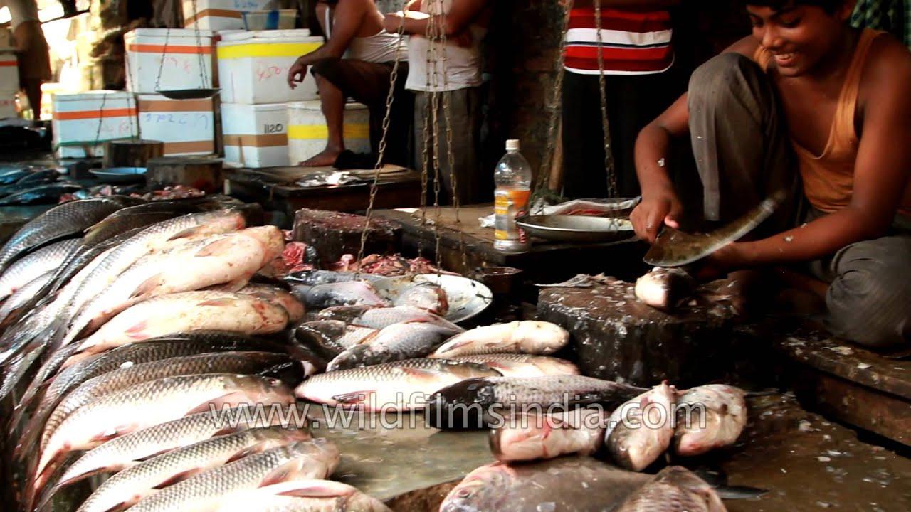 Fish market paltan bazaar of guwahati in assam youtube for Bud s fish market