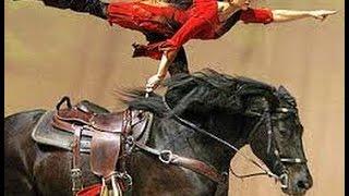 Equitacion de Trabajo - TvAgro por Juan Gonzalo Angel