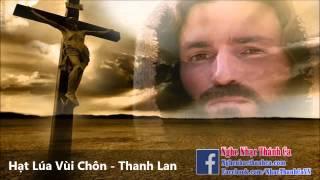Thánh Ca | Hạt Lúa Vùi Chôn - Thanh Lan