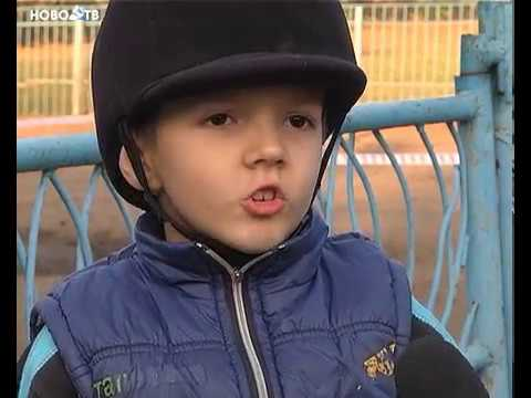 Бенгалы и дети leominipard.ru - YouTube