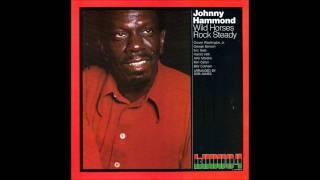 Johnny Hammond - Wild Horses