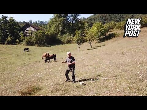 Kat Jackson - Farmer Terrified by Drone