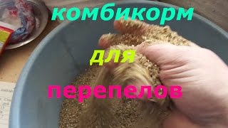 рецепт комбикорма для перепелов от 3-х недель