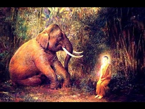 Buddhar Biography |Siddhartha Became The Buddha - History In Tamil
