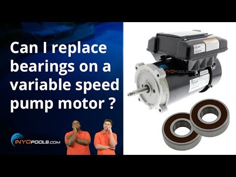Can I Replace Bearings On A Variable Speed Pump Motor Youtube