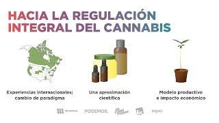 Foro 'Hacia la regulación integral del cannabis'