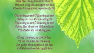 Trần Thái Hòa - Ở Đâu Cũng Có Em