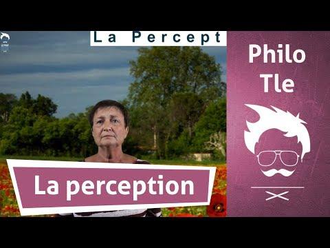 La perception (1/2) - Cours de philosophie - Terminale L