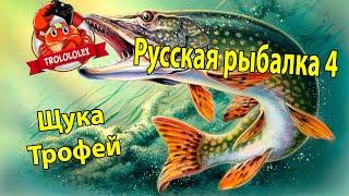 Russian fishing 4  Трофейная щука  оз Ладожское  Русская рыбалка 4
