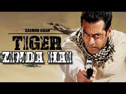tiger zinda hai salman khan in ek tha tiger sequel confirm