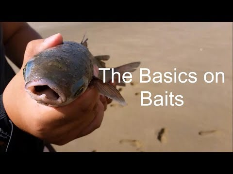 NZ Basic Fishing | Tutorial | How To Select Your Baits