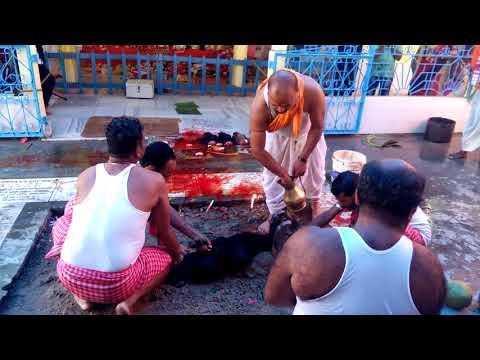 Durga Puja... ( Lumding) 2017