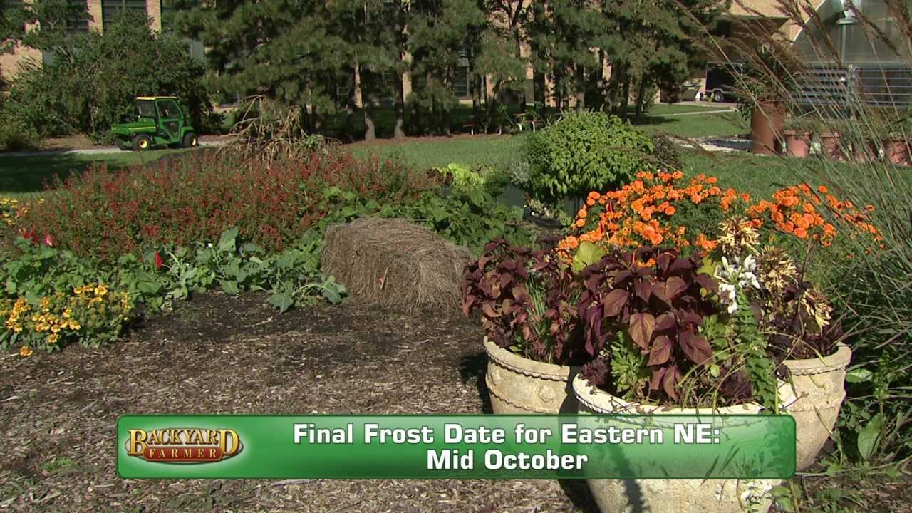 Fall Garden Tips - YouTube