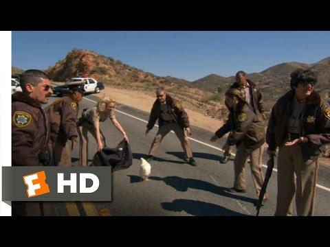 Reno 911!: Miami 210 Movie   Stop, Chicken, Stop! 2007 HD