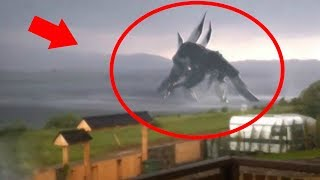 7 Giant Creatures Caught on Tape