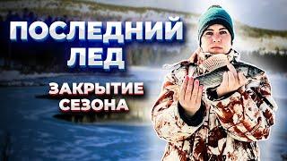 Лед таит на глазах Закрытие СЕЗОНА твердой воды Весенняя рыбалка на хариуса