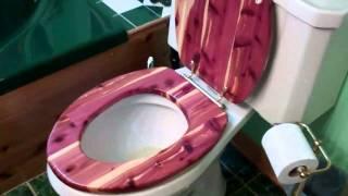Wood Toilet Seat 2