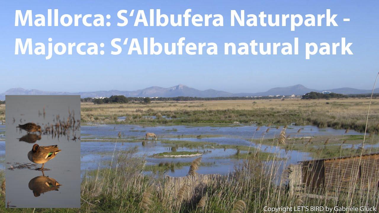 Albufera Natural Park Mallorca