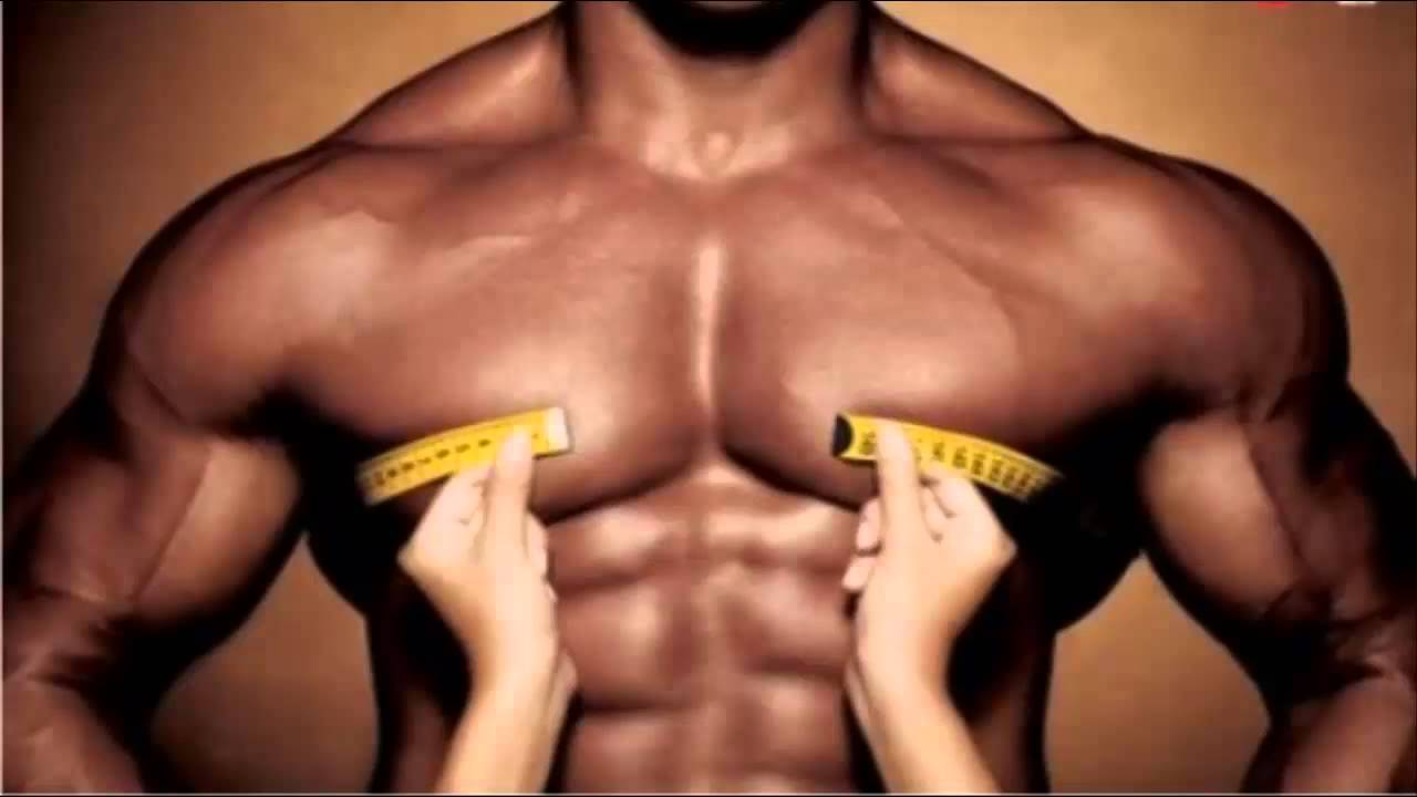 7 Razones Por Las Que Sus Músculos Dejaron De Crecer - YouTube