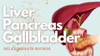 Biliary System Healing + Detox  (Liver, Gallbladder and Pancreas)  Gentle Rain Sounds