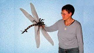 Гигантские насекомые и рептилии древности. Динозавры это круто!