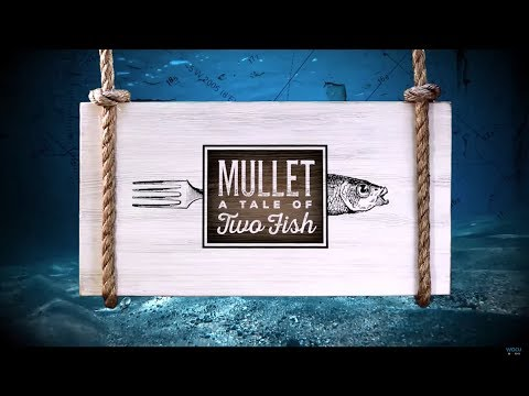 Mullet: Tale of Two Fish