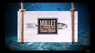 Mullet: A Tale of Two Fish - A WGCU Documentary
