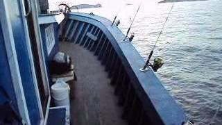 pescaria  GRUPO PESCA REAL