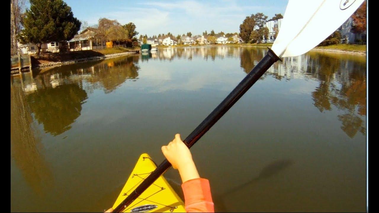 Kayaking in Redwood shores  Bay Area Weekend Trips