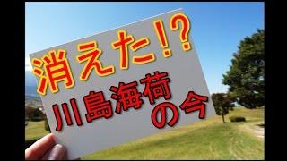 川島海荷が現在消えた理由… NHKの朝ドラ「まれ」での演技が注目を浴びる...
