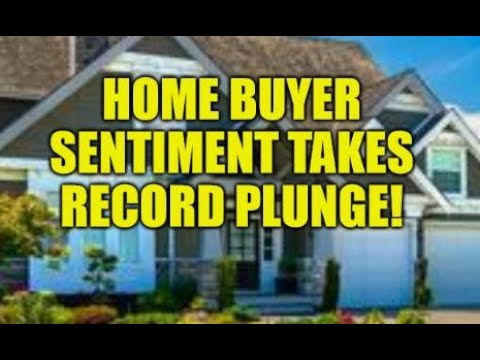 HOME BUYER SENTIMENT TAKES RECORD PLUNGE, CREDIT CARD SPENDING BINGE, LOANS CAN'T BE PAID BACK