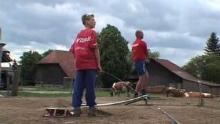 Hornussen - the sport of Swiss farmers