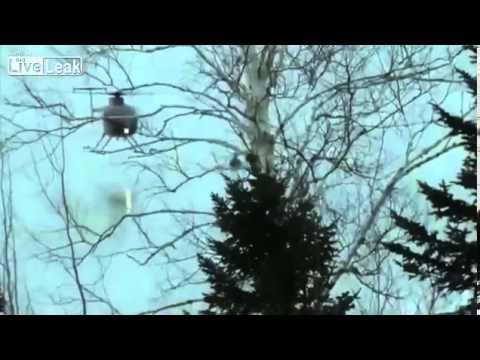 Kenhvideo.com-Đội cứu hộ dùng trực thăng cứu 2 con nai trên mặt băng