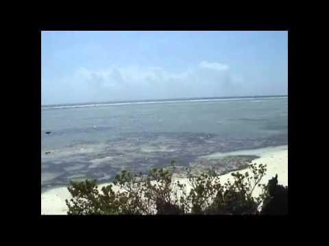 Matemwe Bungalows, Zanzibar, holidays and honeymoons, video of Matemwe Bungalows with Africa Odyssey