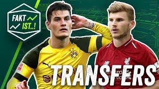 Schick: Meister mit BVB oder Schalker Abstiegskampf? Transfer News