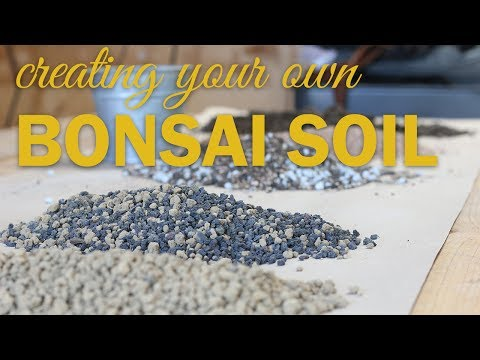 Bonsai Soil Basics