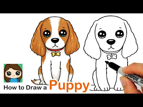 How To Draw A Cocker Spaniel Puppy Dog Easy Safe Videos For Kids
