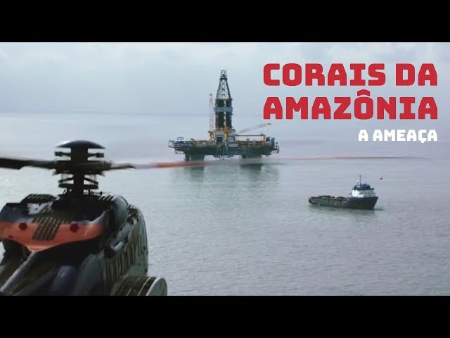 Corais da Amazônia: A ameaça