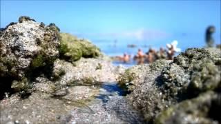 La barriera corallina di Sharm El Sheikh ripresa con il Nokia 808 PureView