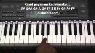 Nee Gudu Chedirindi Piano Tutorials - Nayakudu