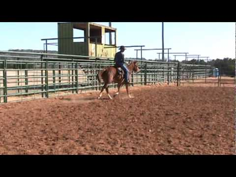 Legends Flashback - Sorrel Quarter Horse Gelding