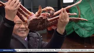 Морское собрание Сезон А минтаевой путины 2021 Китай и вирус куда девать рыбу
