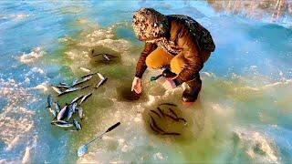 Удачное завершение сезона подлёдной рыбалки 2020 в Якутии