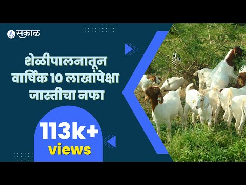 0511 agro goat pkg MPEG1 High Quality