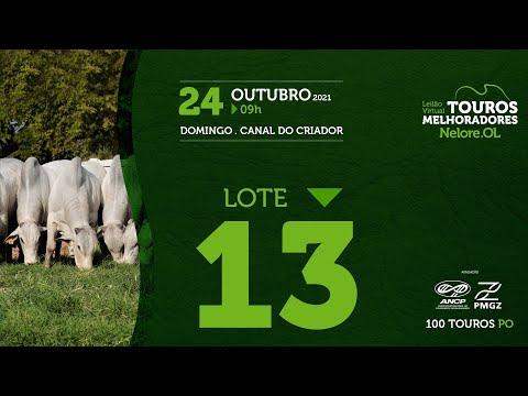 LOTE 13 - LEILÃO VIRTUAL DE TOUROS MELHORADORES  - NELORE OL - PO 2021