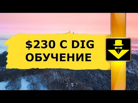 $230 С DIGNITY ОБУЧЕНИЕ СКОРО АРБИТРАЖ КРИПТОВАЛЮТ