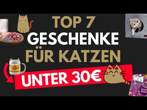 Geschenke für Katzen/ Geschenkideen für Katzen - Geschenke für Katzenliebhaber unter 30€