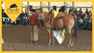 Pat Gives a Cowboy & His Horse a Makeover at Savvy Summit! Part 2 of 4