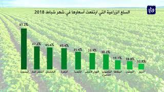 تراجعُ أسعار المنتجين الزراعيين بنسبة 22% خلال شباط الماضي - (18-4-2018)